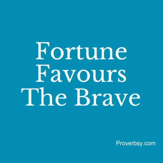 fortune favours the brave essay Free sample essay on a brave deed for kids last year, in the month of june, there was a big fire in my neighborhood shops the gutted shops were mainly of jute and plastic dealers there were three god owns of plastic toys and two sales depots of jute and gunny bags one fireman did a marvellous job there.