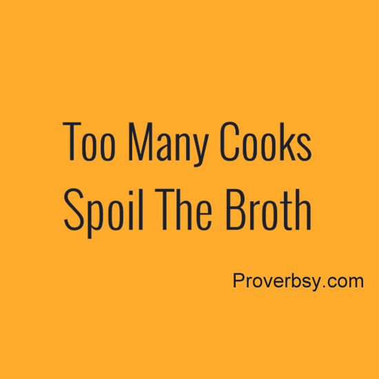 essay on proverb too many cooks spoil the broth