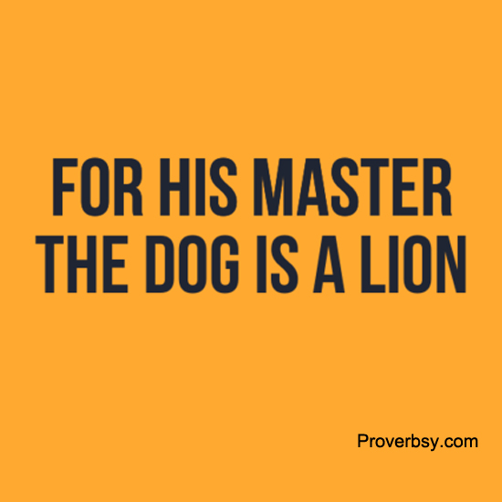 Lion Archives - ProverbsyProverbsy