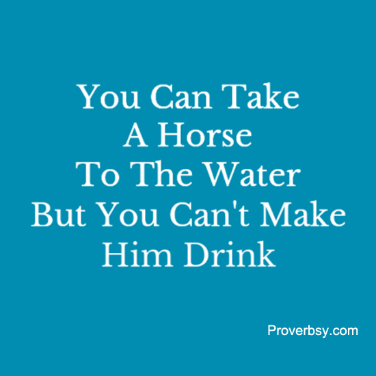 proverb you can lead a horse to water