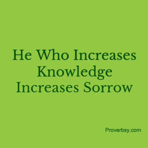 he that increases knowledge increases sorrow Woody wednesday ecclesiastes and woody allen's films: solomon would got along well with woody (part 15 midnight in paris part n ernest hemingway 3rd part he who increases knowledge increases sorrow ecclesiastes.
