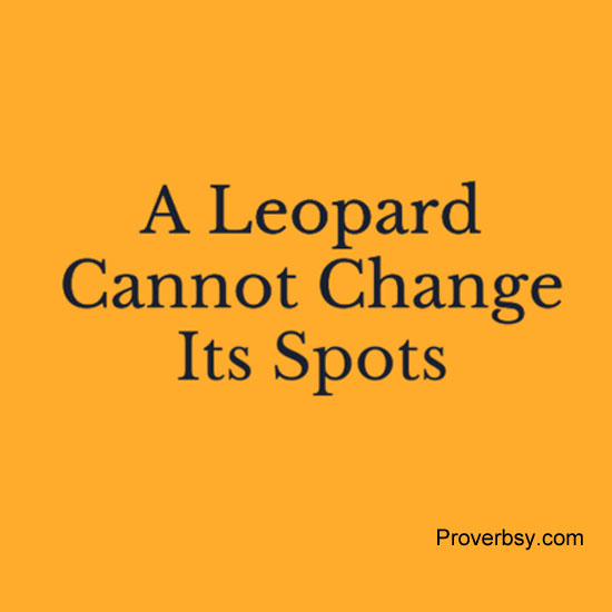A Leopard Never Changes Its Spots In Spanish Best 2017