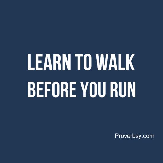 Walk Before One Can Run | Definition of Walk Before One ...