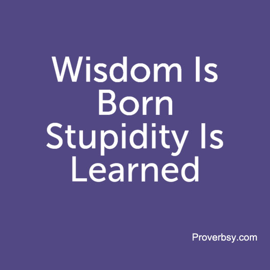 "Результат пошуку зображень за запитом ""wisdom is born and stupidity"""